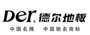 德尔未来科技控股集团股份有限公司